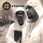 12th TRIBE - Knowledge Is The Tree Of Life