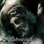 acoustic torment - schwarzwald