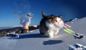 at-at-walker-cat-joost5