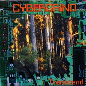 cybergrind