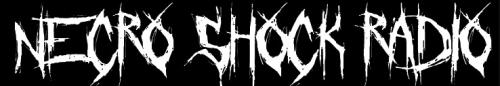 cropped-nsr-logo-long.png