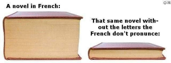 a novel in french