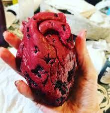 rotting human heart